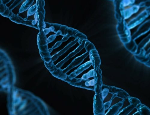 Insurance Summit: Genetic testing could lead to lower premiums